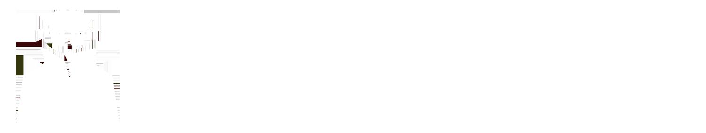 logo_skyreporter